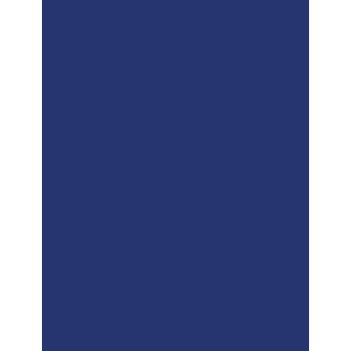 icona che rappresenta una medaglia